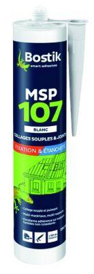 MSP 107